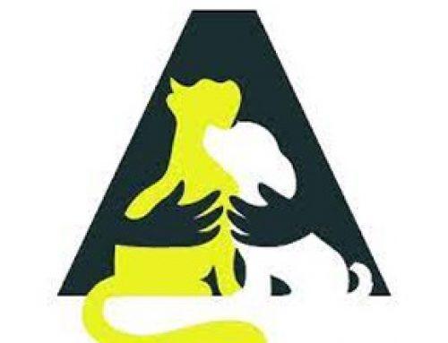 Message important à l'attention des propriétaires de chiens de la ville de Percé